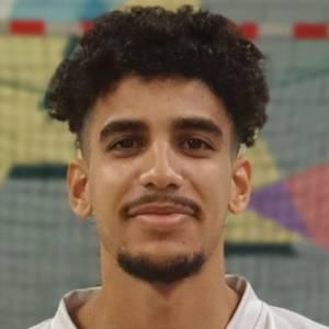 Mounir Labouize